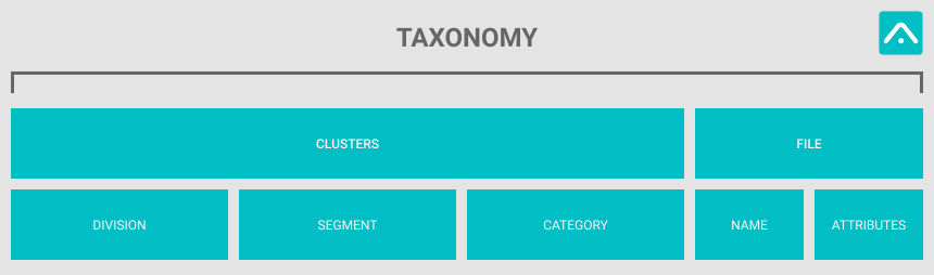Taxonomy structure in digital file management